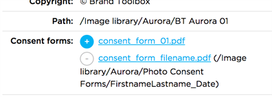 Consent Forms Frontend Detail