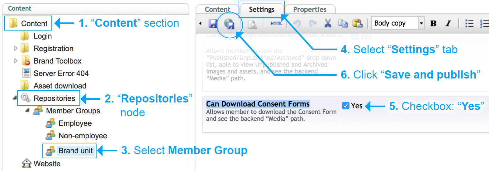 Consent Forms Enable Download Settings